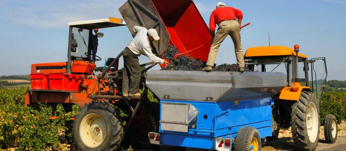 Odszkodowania z ubezpieczenia OC rolników